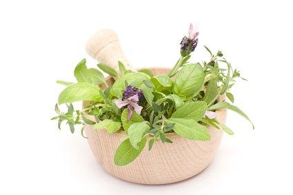 Fitoterapia: la curación con cubierta vegetal medicinales ¿es efectiva?